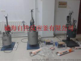 专业厂家现货供应5L实验高压反应釜