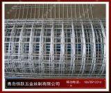 青岛電焊網,青岛鐵絲網,镀锌不鏽鋼網
