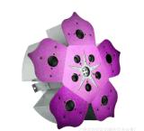 LED紫荊花燈娛樂場所燈