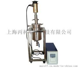 上海丙林工业型超声波破碎仪