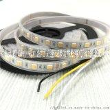 5050-60D-24V双色温灯带IP67