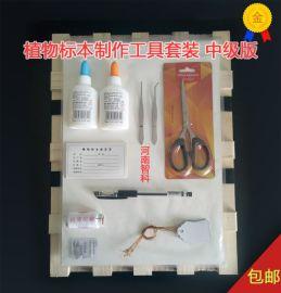 标本制作工具套装 中号版 智科仪器