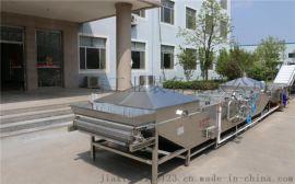 隧道式果蔬果蔬脱水烘干设备 脱水蔬菜烘干加工生产线