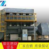 催化燃烧设备技术说明,河北催化燃烧设备生产厂家