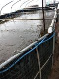 PVC防水帆布水池,PVC防水帆布水池厂家