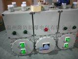 防爆照明配電箱EXdeIICT6殼體