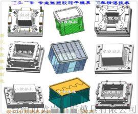 黄岩注塑模具定制冷冻箱塑料模具 40年老品牌