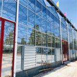 智能温室造价预算 连栋智能温室大棚建设施工