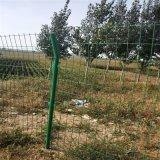 巴彦淖尔防护围栏 绿色铁网护栏 公路护栏网