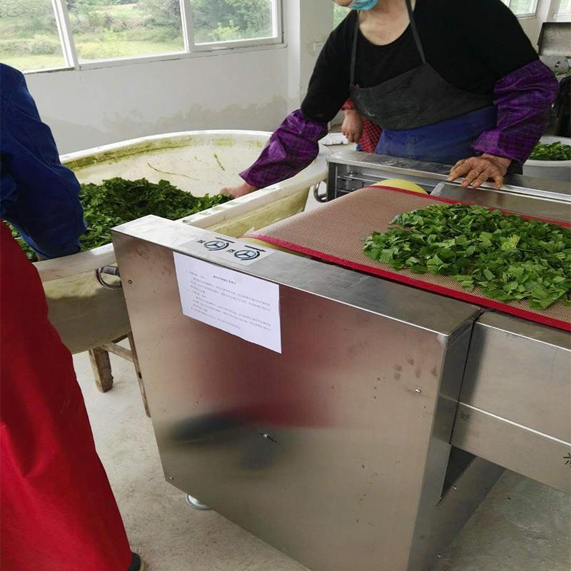 隧道式微波殺青機廠家直銷水冷磁控管定製抹茶加工設備微波殺青機
