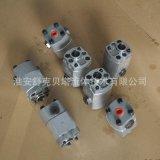SKBT-3.2-双向齿轮泵