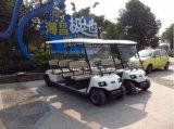 成都朗動11座電動旅遊觀光車