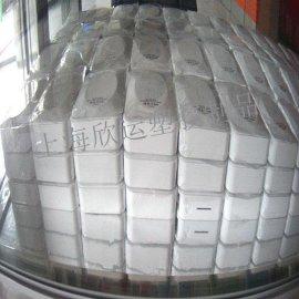 中国上海汽车启动电源专业