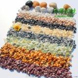 廣東彩色礫石小石子石米石 園林盆栽鋪面石