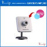 潮流网络 GXV3615WP_HD方型IP网络摄像机