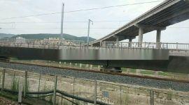 铁路防护网 铁路沿线防护网 桥下封闭防护网 高铁金属网片防护网