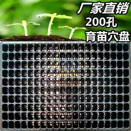 200孔黑色PVC育苗盘