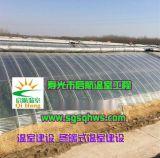 溫室建設  全鋼架日光溫室大棚