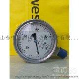 Y-200/Y-250北京布莱迪BLD压力表厂家直销现货