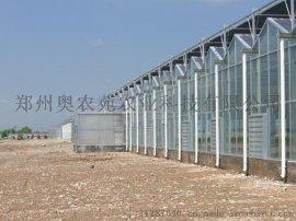 生态餐厅观光智能玻璃温室 阳光板温室