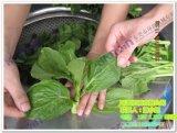 供应蔬菜脱水机全新蔬菜脱水机