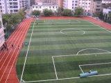 春蕾ZQ-01足球运动人造产品