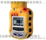 全球首款袖珍型PID检测仪美国华瑞PGM-1800
