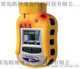 袖珍型PID检测仪美国华瑞PGM-1800