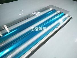 3管T8带罩日光灯/不锈钢斜边净化灯