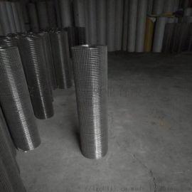 养鸡网养鸭网农用养殖网不锈钢电焊网