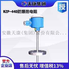 安徽天康集团防爆法兰热电阻WZP440温度传感器PT100固定法兰安装