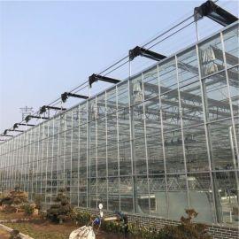 智能阳光板温室 温室定制 质量保障