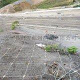防落石防护网.高铁护坡防护网.高铁路基边坡防护网