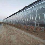 陽光板智慧溫室骨架 育苗溫室公司