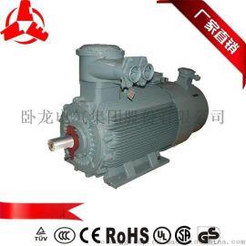 CNE南阳YBBP系列三相异步隔爆型变频调速电动机