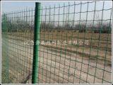 荷兰网|养鸡铁丝网,果园围栏网,