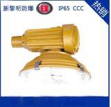 供应SBD1102免维护节能防爆路灯,防爆无极路灯,无极节能灯