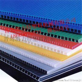 PP塑料格子板生产线中空隔板设备中空建筑模板设备