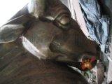 公牛不锈钢雕塑定做,全铜锻造公牛雕塑