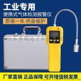 氫氣檢測儀_固定式氫氣檢測儀 _攜帶型氣體檢漏儀