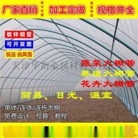 热镀锌钢管 建造一亩大棚造价