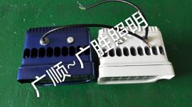 LED亮化灯GWD-FGD100W