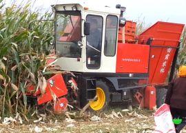 自走式玉米收获机 4YZB-3 田霸 扒皮小型玉米收割机 小四轮拖拉机玉米收获机