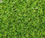 河南人造草坪 戶外綠色裝飾幼兒園圍擋草坪 塑料加密