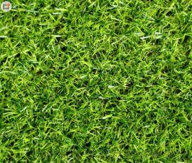 河南人造草坪 户外绿色装饰幼儿园围挡草坪 塑料加密