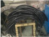 DN20*700防爆软管G3/4防爆挠性管