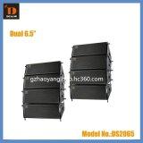 DIASE--DS2065,双6.5寸线阵音箱,线性阵列音箱,报告厅线阵音箱,小型线性音箱