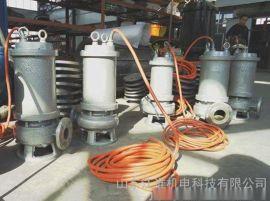 XWQ全铸造不锈钢排污泵 耐腐蚀污泥泵 江淮