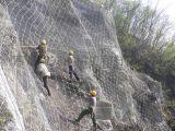 供应【厂家直销】自贡边坡防护网、宜宾边坡防护网、雅安边坡防护网