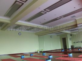 供应高温电热幕,红外辐射板,大空间采暖设备